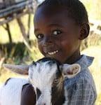 smaller kid & goat kid